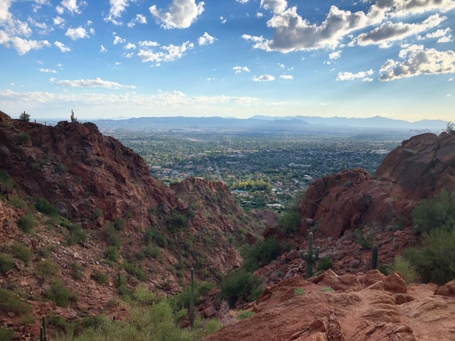 Phoenix16